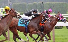 Racing in the Rain Stock Photos