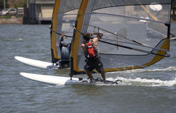 Racing Sailboarders. Sailboarder in a race Stock Photos