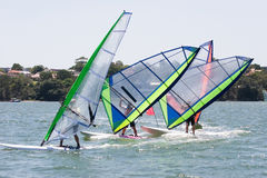 Racing Sailboards Stock Photography