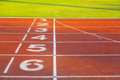 Racing track. In the stadium Royalty Free Stock Photo