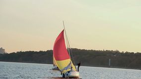 Racing yacht on city river, active rest, extreme sport, vacation. Stock footage stock video