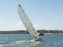 Racing Yacht. Monohull sailing boat competing in race on the Burnett River Bundaberg staged by the Bundaberg Sailing Club. Queensland - Australia Royalty Free Stock Photo