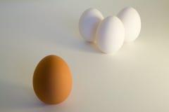 Racismo del huevo Fotografía de archivo