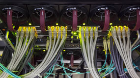 Rack in the data center. With working servers with optical FC and UTP cables Royalty Free Stock Photography