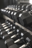 Rack of desaturated dumbbell weights in gym Stock Images