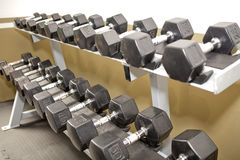 Rack with dumb bells at a gym. Stock Image