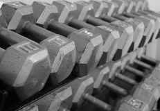 Rack of Free Weight Dumbells