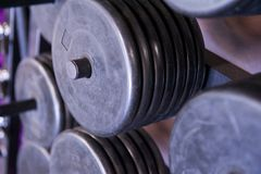 Rack of Free Weight Plates at a Professional Gym Stock Images