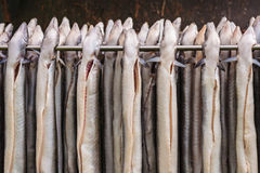 Rack with fresh smoked eel in The Netherlands Royalty Free Stock Photo
