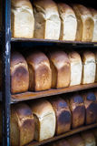 Rack of freshly baked breads royalty free stock images
