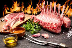 Rack of lamb in front of a fireplace Royalty Free Stock Image