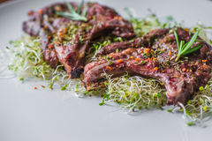Rack of Lamb with Pasta Stock Photography
