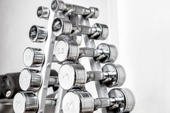 Rack with metal dumbbells. Stock Image