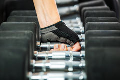 Rack with metal dumbbells in gym. Stock Images