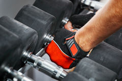 Rack with metal dumbbells in gym. Stock Image