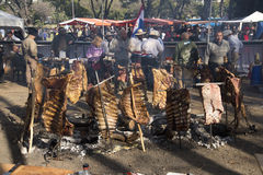 Rack of Ribs Roasted on Crosses 04 Stock Image