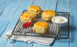 Rack Of Scones Royalty Free Stock Photo