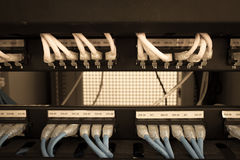 Rack Server Internet Connected with LAN cables. Stock Photography