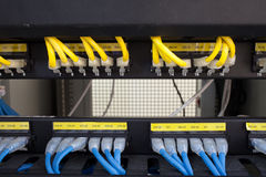 Rack Server Internet Connected with LAN cables. Stock Images