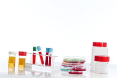 Rack with several tubes blood , plates petri and the background urine samples in the laboratory Stock Images