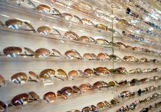 Rack of sunglasses. A rack displaying rows of sunglasses Royalty Free Stock Photos