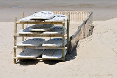 Rack of surfboards. A rack of 10 surfboards at a local surfclub Royalty Free Stock Photo