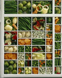 Rack of vegetables Royalty Free Stock Image