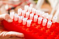 Rack of vials. Rack of Eppendorf test tubes held in hand stock images