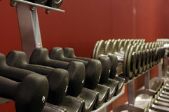 Rack of weights. In the gym Stock Photography