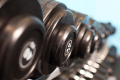 Rack with weights Stock Images