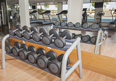 Rack of weights in a gym Royalty Free Stock Photo