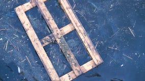 Racka ner på i vatten Världshavförorening stock video