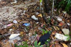 Racka ner på plast- förorening Arkivfoto
