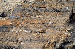 Сracked ground and clay texture Stock Image