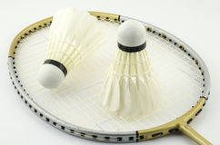 Racket badminton with shuttle cock Stock Image
