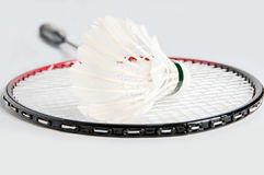 Racket is a badminton and shuttlecock Royalty Free Stock Image