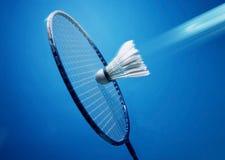 Racket shuttlecocks Stock Image