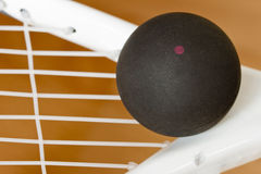 Racket Squash Stock Image
