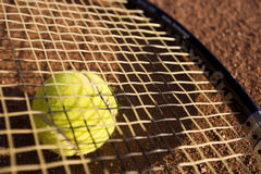 A racket and a tennis ball. Racket and tennis ball on the tennis field, nice light, warm image Stock Photos