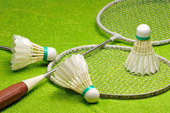 Rackets and shuttlecocks for badminton. Stock Images