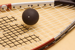 racketsquash Royaltyfri Fotografi