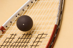 racketsquash Royaltyfria Bilder