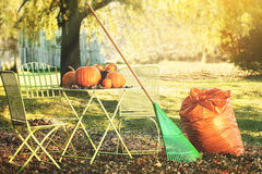 Racking leaves and preparing for Halloween Royalty Free Stock Photo