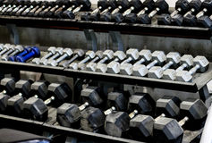 Racks of Dumbells Royalty Free Stock Image