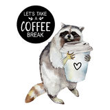Racoon with coffee mug and stylish slogan, animal character isolated on white. Racoon with coffee mug and stylish slogan, animal character isolated on white Royalty Free Stock Image