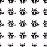 Racoon seamless pattern Stock Image