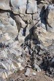 Racos-Basaltsäulen Lizenzfreie Stockfotos