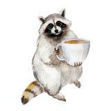 Racum da ilustração da aquarela com caneca de café, caráter animal isolado no fundo branco ilustração do vetor