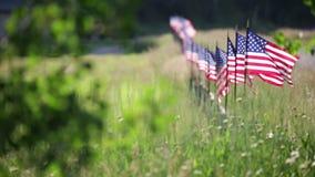 Rad av amerikanska flaggan som blåser i brisen arkivfilmer