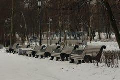 Rad av bänkar i parkera Arkivfoton